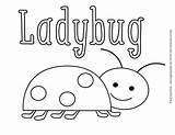 Coloring Bug Pill Jaeger Ladybug Emily sketch template
