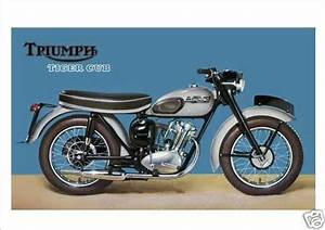 17 Best Images About Triumph Tiger Cub On Pinterest