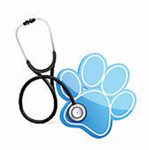 Clipart of Veterinarian k7884490 - Search Clip Art ...