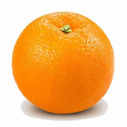 Orange Transparent Clip Clipart Fruit Fruits Background