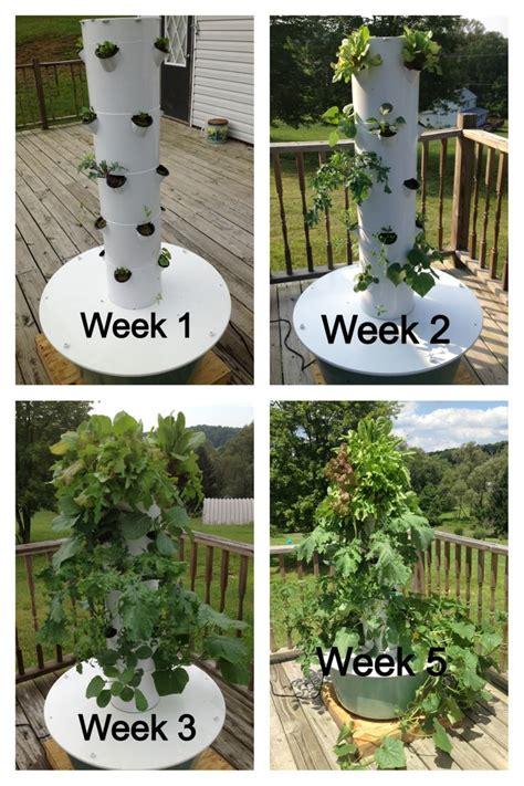 my aeroponic tower garden shartley towergarden