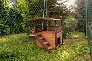 Maison Pour Chat Extérieur : garde chat la pension des 3 chats pension pour chats ~ Premium-room.com Idées de Décoration