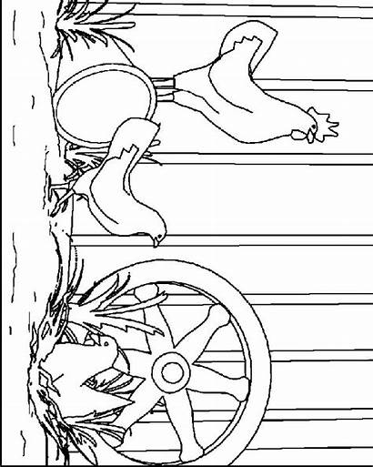 Chicken Coloring Pages Animal Chickens Animated Fun