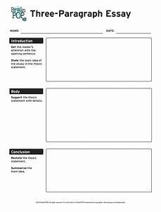 Three Paragraph Essay Graphic Organizer