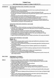 consulting technical manager resume samples velvet jobs With netsuite consultant resume
