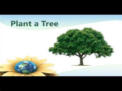 simple steps  save  environment hamilton county