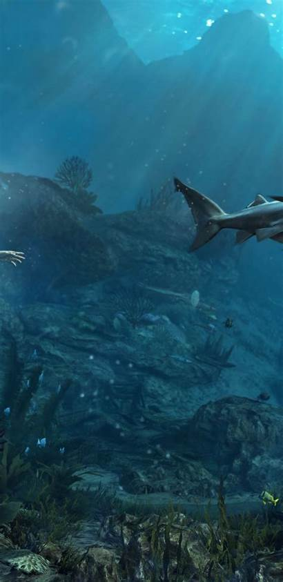 Underwater Shipwreck Shark Flag Creed Assassin Wallpapers