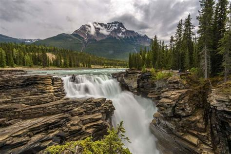 Jasper National Park Columbia Icefields And Athabasca