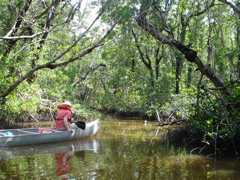 everglades national park gulf coast visitor center