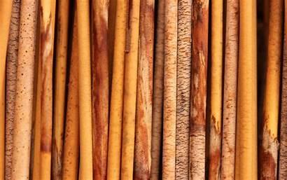 Texture Wood Wallpapers Background Desktop Unique Bamboo
