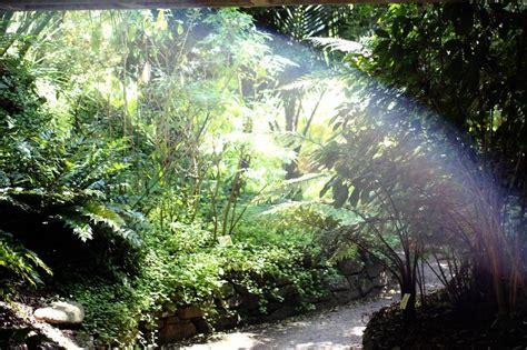 Botanischer Garten Roscoff by Der Exotische Und Botanische Garten Roscoff Photo 10