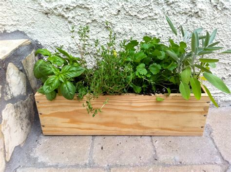 Window Sill Herb Garden Box by 5 Ways To Get Gardening In Kitsilano Kitsilano Ca