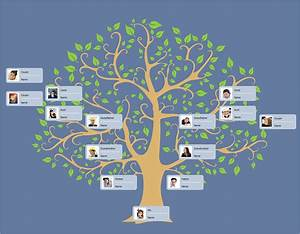 Software To Draw Family Tree Diagram