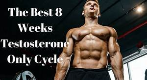 Best Testosterone Levels For Bodybuilding