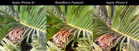 the flash iphone 6 plus blackberry passport might beat iphone 6 plus if os
