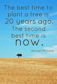 Best Tree Quote Ideas And Images On Bing Find What Youll Love