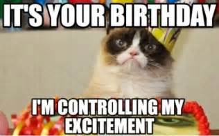 birthday cat meme 10 witty cat happy birthday meme 2happybirthday