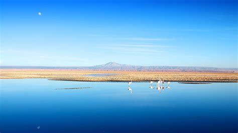Salar De Atacama, Chile  Wallpaper #44633