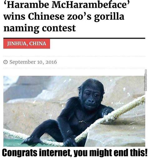 Funny Harambe Memes - blah blah blah harambe by luxvertas meme center