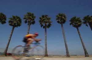 Kalorienverbrauch Berechnen Radfahren : kalorienbedarf berechnen inkl tabellen wiressengesund ~ Themetempest.com Abrechnung