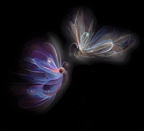 Animated Butterfly Wallpaper Gif - free butterfly wallpaper animated wallpapersafari