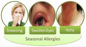 Allergy Skin Prick Test Allergy Testing In Phoenix Apaa