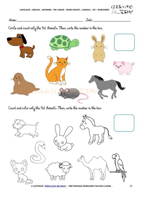 pet animals worksheet activity sheet 15