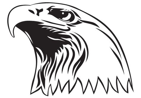 bald eagle coloring pages  kids printable