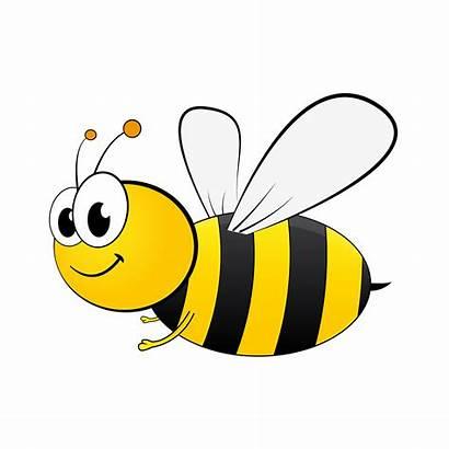 Bee Transparent Clipart Honey Clip Background Webstockreview