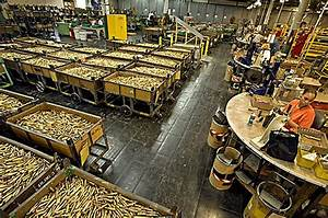 Billions of Bullets - Photo Essays - TIME