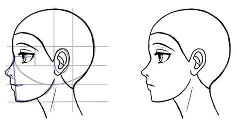 draw  side   face  manga style bocetos