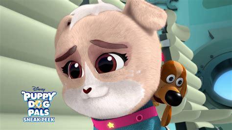 blast  puppy dog pals disney junior youtube