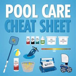 Our Pool Care Cheat Sheet Infographic Will Help You Be