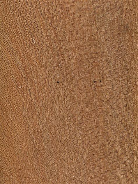 philippine mahogany  wood  lumber