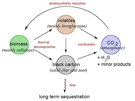 black carbon offers long term carbon sink