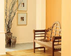 paint colors for homes interior best orange interior paint colors ideas interior house painting interior painting tips home
