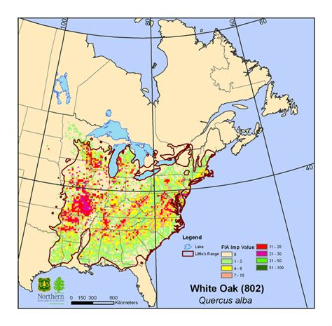 white oak quercus alba climate change atlas