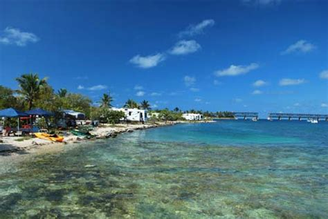 Honda Snorkeling by Snorkeling Florida Find The Exceptional Areas