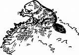 Dam Beaver Coloring Builds sketch template