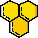 Honeycomb Icon Icons Panal Gratis Icono Getdrawings