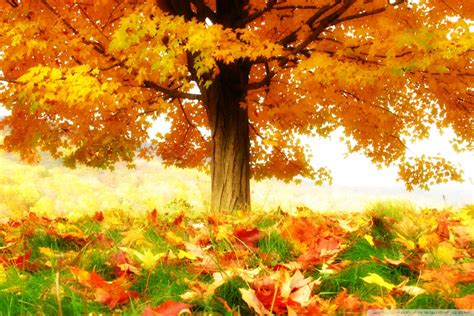 Free Animated Autumn Wallpaper - lovely animated wallpapers beautiful anime autumn seasons9