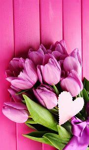 Pink Flower Mobile Wallpaper HD | 2021 Cute Wallpapers