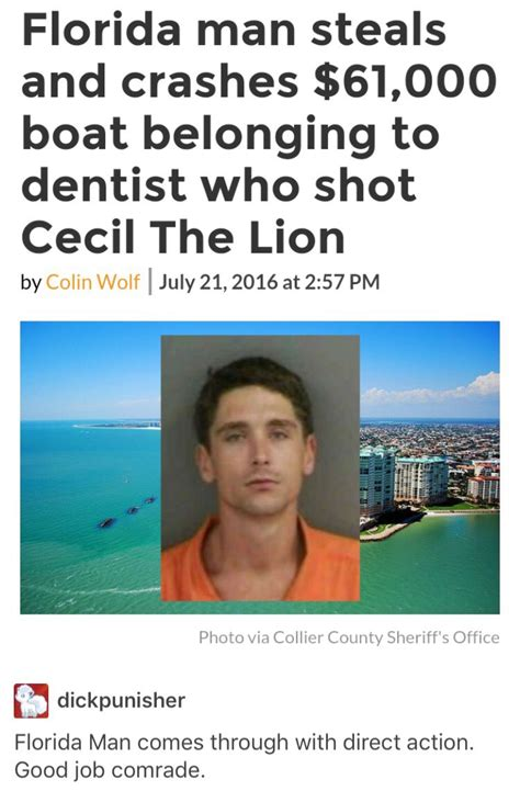 Florida Man Meme - florida man strikes again tumblr pinterest memes humor and florida humor