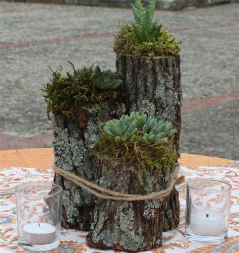 Gartendeko Holz Baumstamm by Hauswurz Baumstamm Suche Garten Garten