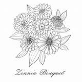 Zinnia Botanicalamy sketch template