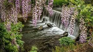 Waterfall, Rocks, Plants, 4k, Hd, Wallpapers