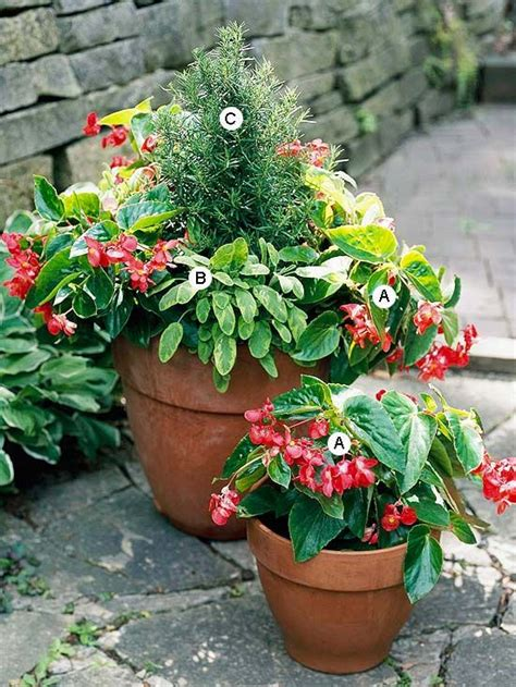 potted plants for shaded areas flower box designs for shade woodworking projects plans