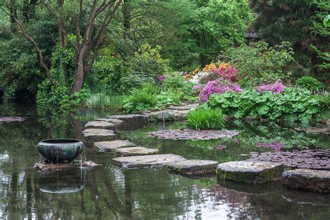 Japanischer Garten Nadelbaum by Japanischer Garten Leverkusen Eine Paradiesische Blumen Oase