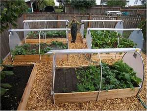 raised bed vegetable garden layout raised bed vegetable With vegetable garden design raised beds