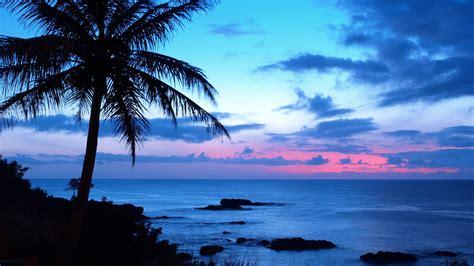 mare vento  surf intervista  pio marasco hawaii